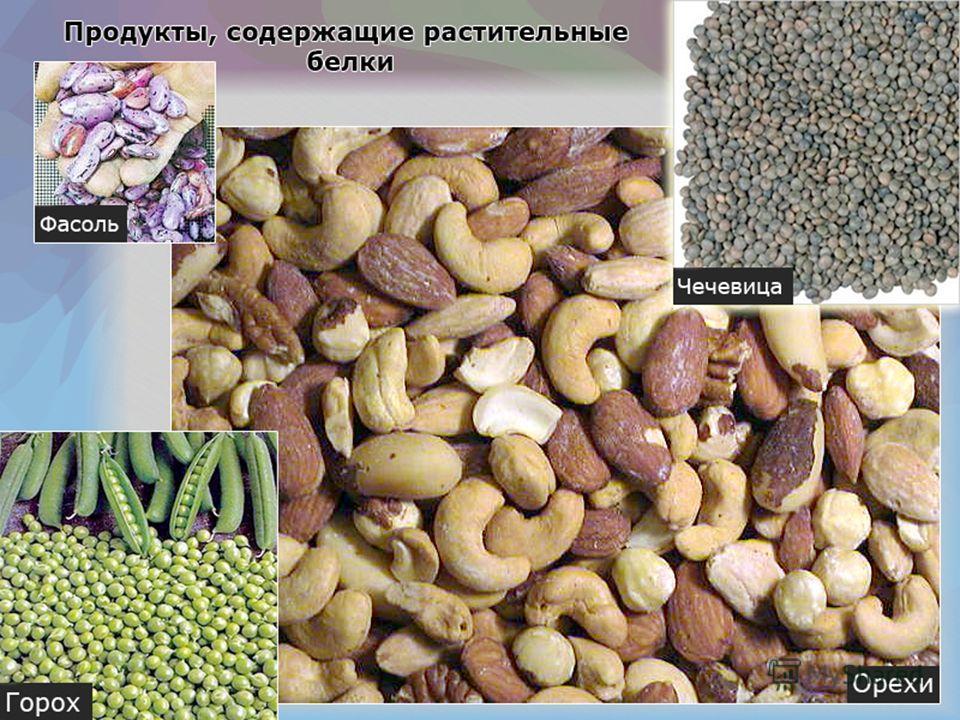 Белки - один из трех главных составных компонентов пищи. Состоят из аминокислот. Необходимы клетке для роста и восстановления своего строения. Подразделяются на белки животные (полноценные) и растительные (неполноценные). Содержатся во многих продукт