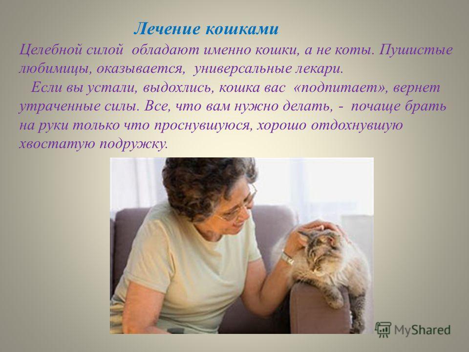 Лечение кошками Целебной силой обладают именно кошки, а не коты. Пушистые любимицы, оказывается, универсальные лекари. Если вы устали, выдохлись, кошка вас «под питает», вернет утраченные силы. Все, что вам нужно делать, - почаще брать на руки только