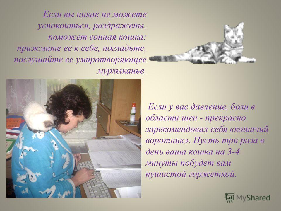 Если вы никак не можете успокоиться, раздражены, поможет сонная кошка: прижмите ее к себе, погладьте, послушайте ее умиротворяющее мурлыканье. Если у вас давление, боли в области шеи - прекрасно зарекомендовал себя «кошачий воротник». Пусть три раза