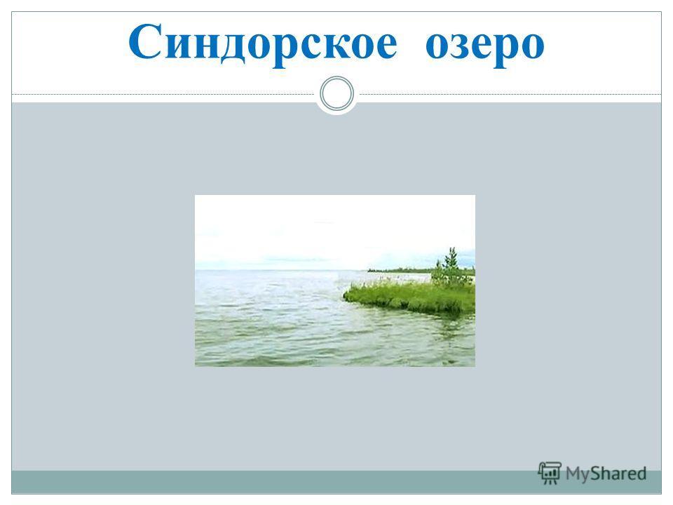 Синдорское озеро