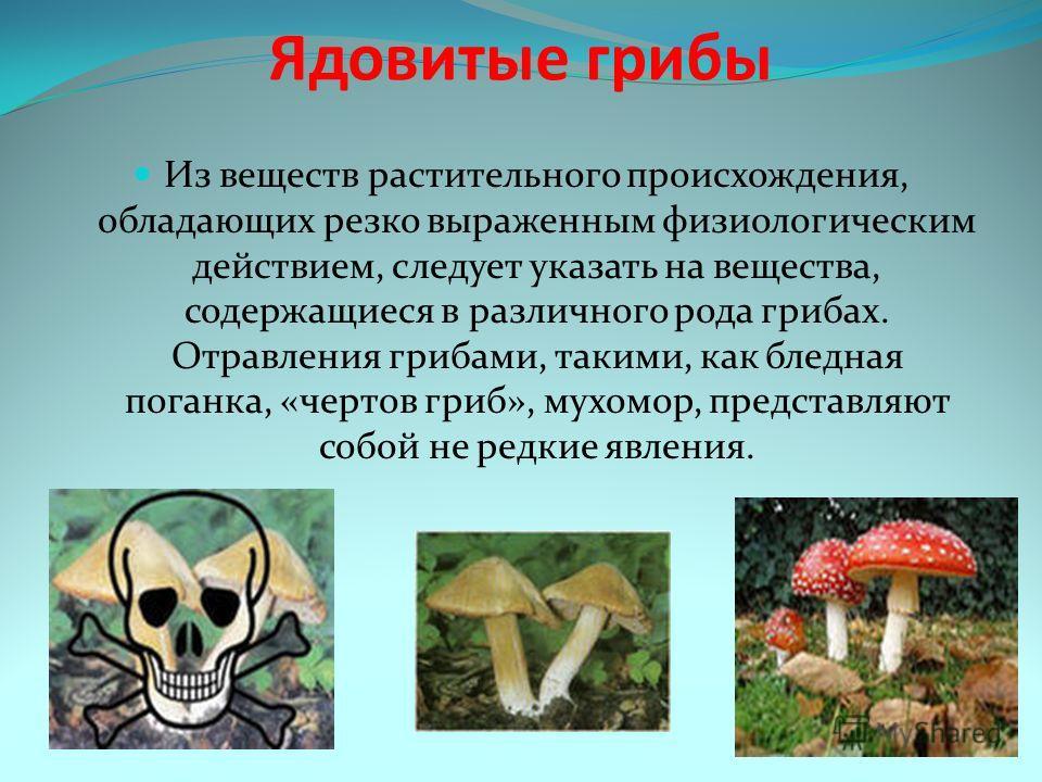 Ядовитые грибы Из веществ растительного происхождения, обладающих резко выраженным физиологическим действием, следует указать на вещества, содержащиеся в различного рода грибах. Отравления грибами, такими, как бледная поганка, «чертов гриб», мухомор,