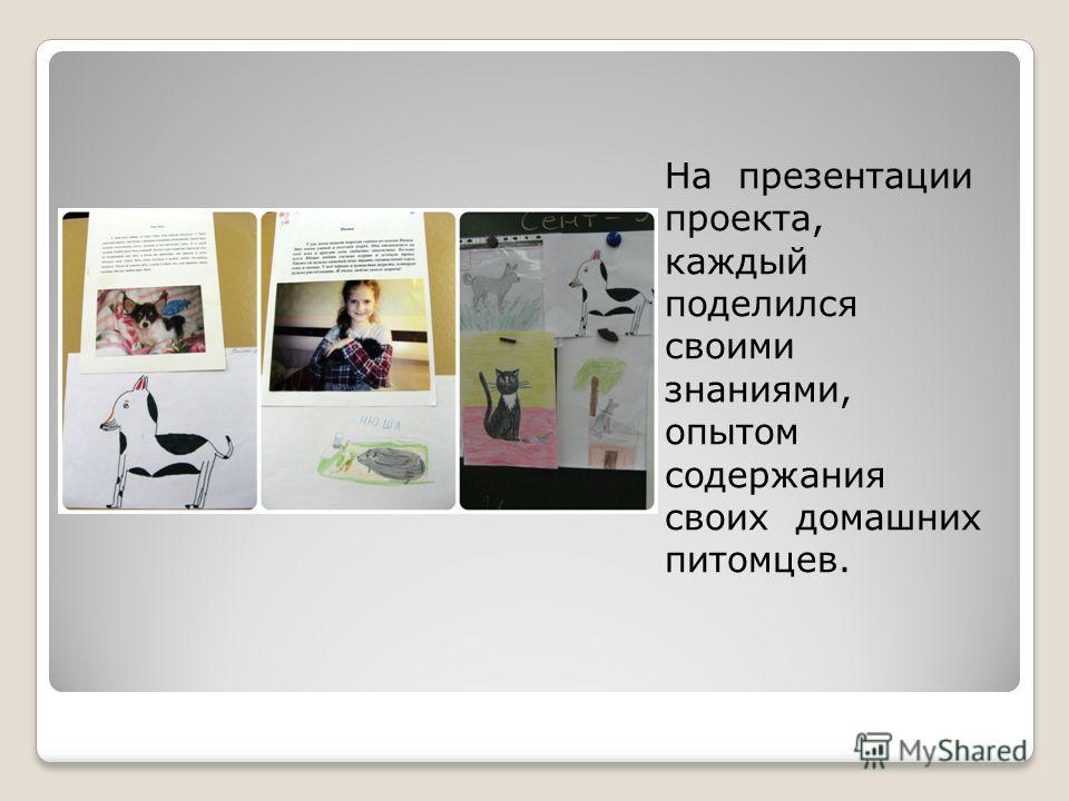 На презентации проекта, каждый поделился своими знаниями, опытом содержания своих домашних питомцев.