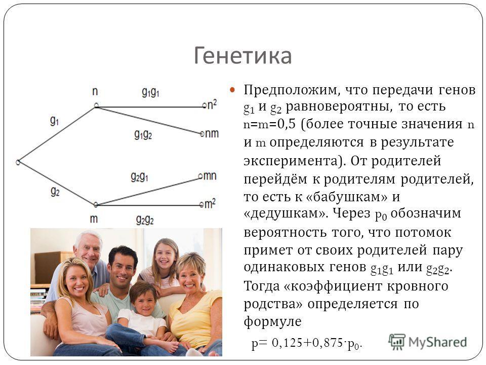 Генетика Предположим, что передачи генов g 1 и g 2 равновероятны, то есть n=m=0,5 ( более точные значения n и m определяются в результате эксперимента ). От родителей перейдём к родителям родителей, то есть к « бабушкам » и « дедушкам ». Через p 0 об