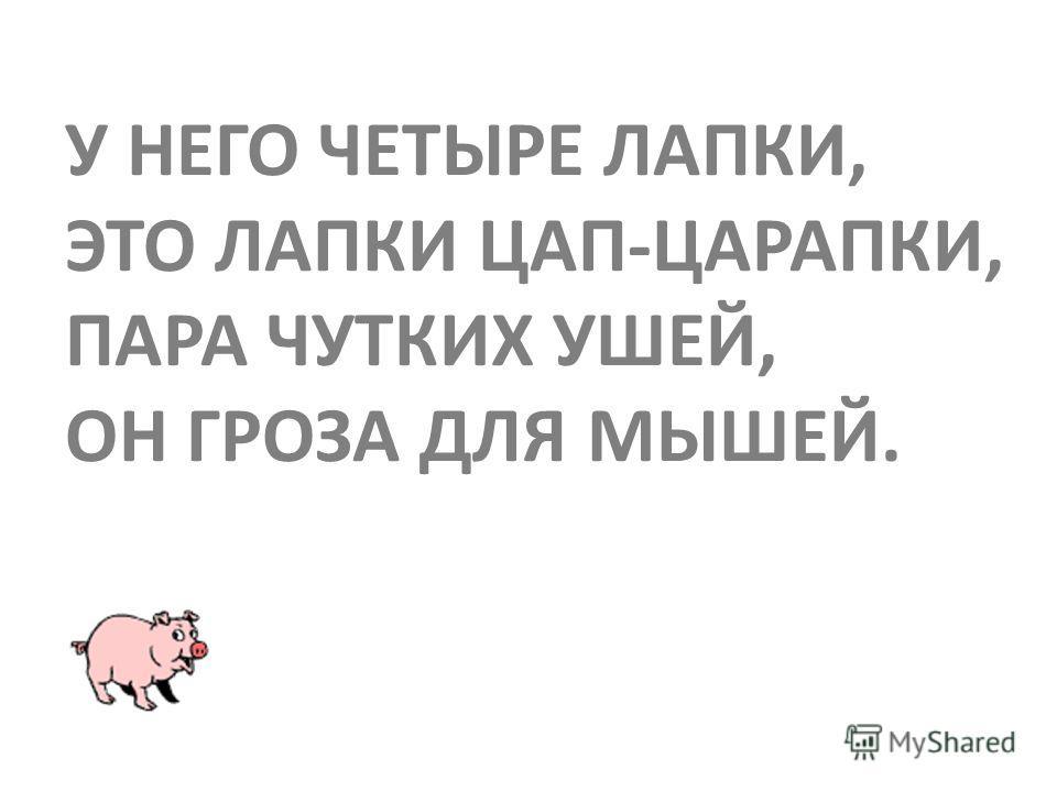 Автор презентации Марина Шадрина