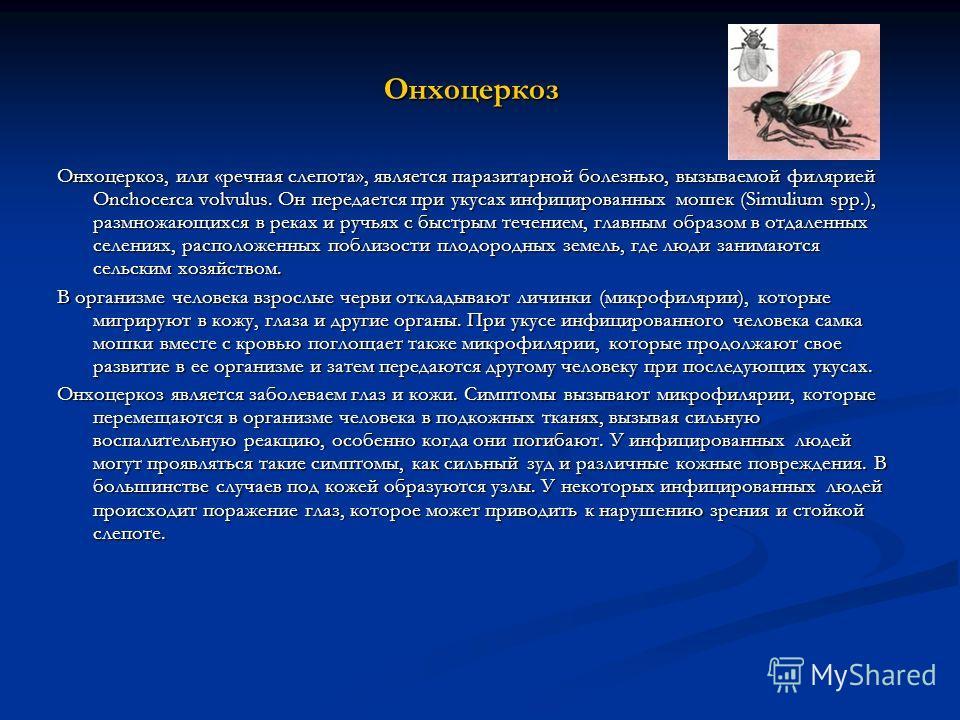 Онхоцеркоз Онхоцеркоз, или «речная слепота», является паразитарной болезнью, вызываемой филярией Onchocerca volvulus. Он передается при укусах инфицированных мошек (Simulium spp.), размножающихся в реках и ручьях с быстрым течением, главным образом в