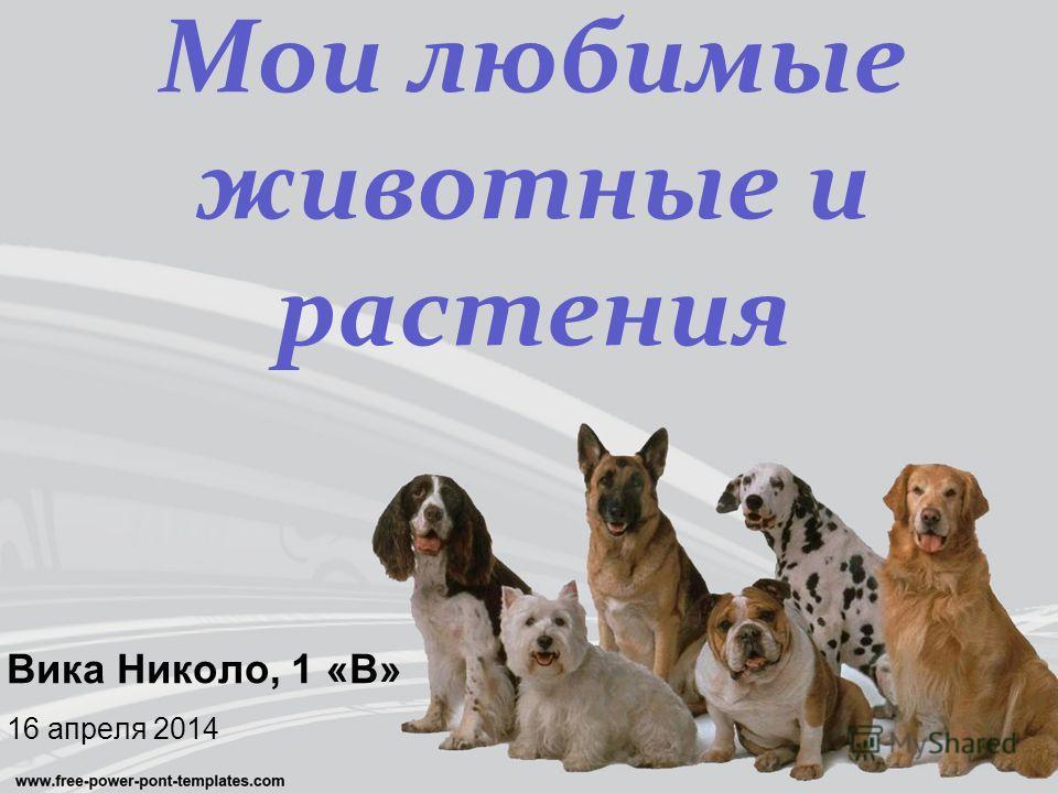 Вика Николо, 1 «В» 16 апреля 2014 Мои любимые животные и растения
