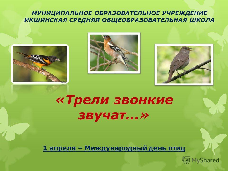 «Трели звонкие звучат...» 1 апреля – Международный день птиц МУНИЦИПАЛЬНОЕ ОБРАЗОВАТЕЛЬНОЕ УЧРЕЖДЕНИЕ ИКШИНСКАЯ СРЕДНЯЯ ОБЩЕОБРАЗОВАТЕЛЬНАЯ ШКОЛА