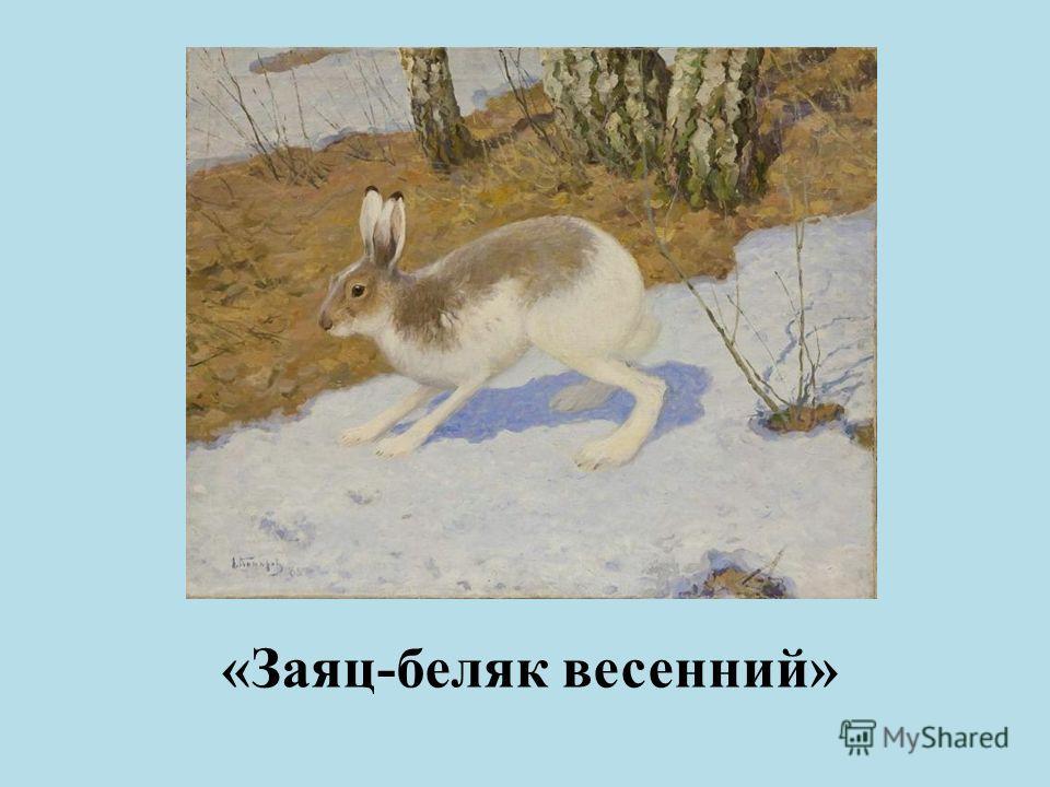 «Заяц-беляк весенний»