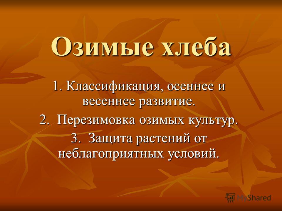 Озимые хлеба 1. Классификация, осеннее и весеннее развитие. 2. Перезимовка озимых культур. 3. Защита растений от неблагоприятных условий.