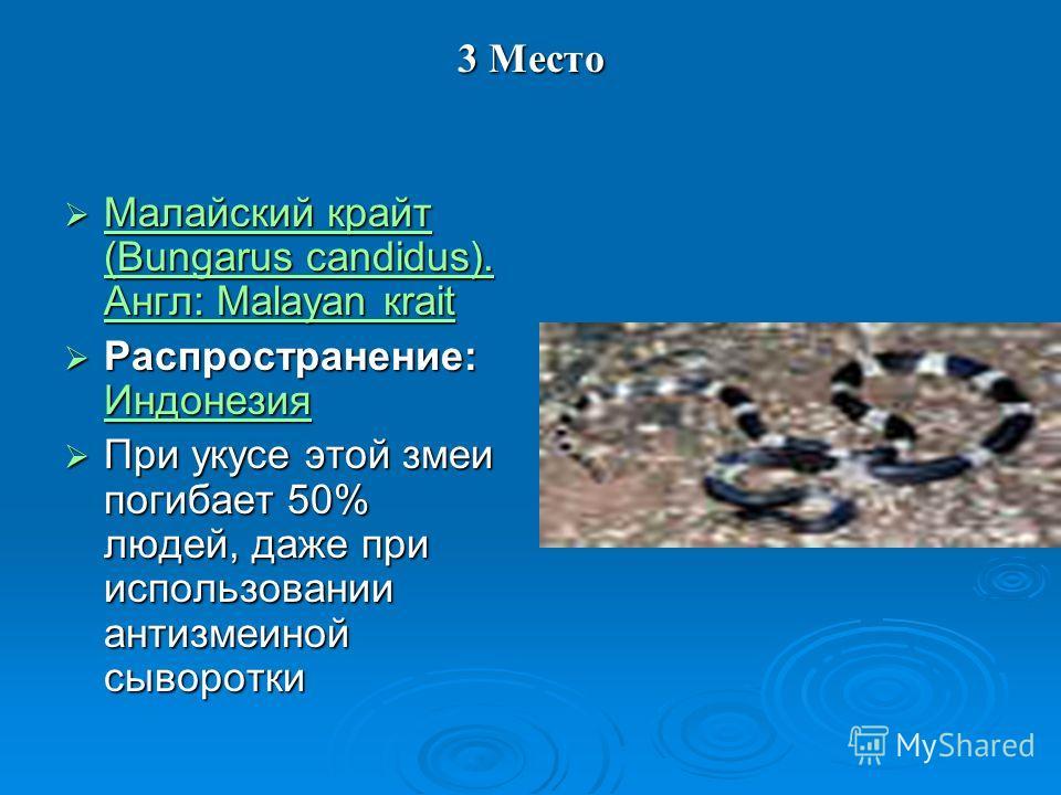 3 Место Малайский крайт (Bungarus candidus). Англ: Malayan кrait Малайский крайт (Bungarus candidus). Англ: Malayan кrait Малайский крайт (Bungarus candidus). Англ: Malayan кrait Малайский крайт (Bungarus candidus). Англ: Malayan кrait Распространени