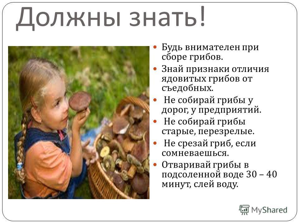 Должны знать ! Будь внимателен при сборе грибов. Знай признаки отличия ядовитых грибов от съедобных. Не собирай грибы у дорог, у предприятий. Не собирай грибы старые, перезрелые. Не срезай гриб, если сомневаешься. Отваривай грибы в подсоленной воде 3