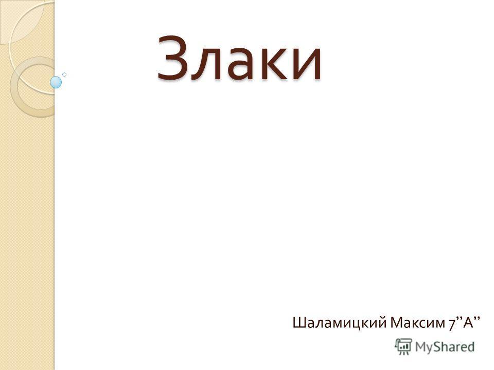 Злаки Шаламицкий Максим 7 А