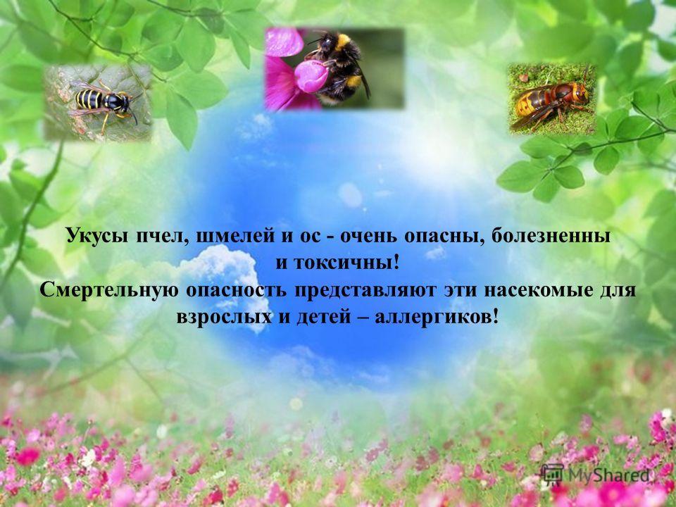 Укусы пчел, шмелей и ос - очень опасны, болезненны и токсичны! Смертельную опасность представляют эти насекомые для взрослых и детей – аллергиков!