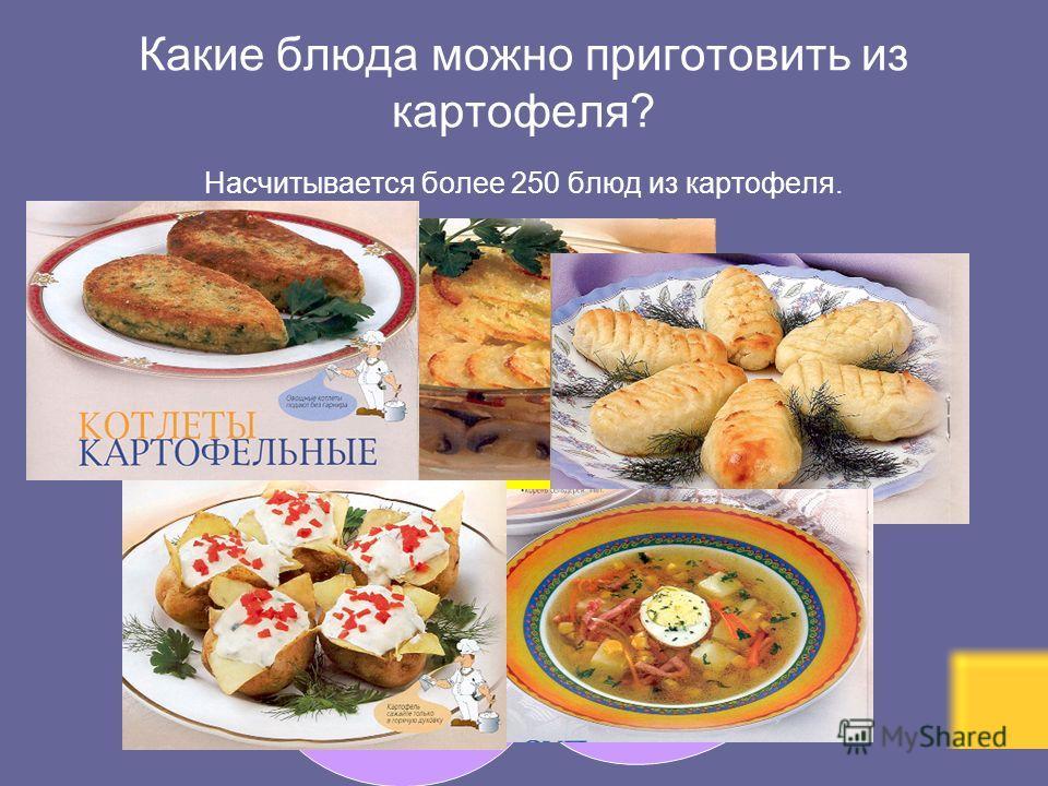 Какие блюда можно приготовить из картофеля? Насчитывается более 250 блюд из картофеля. Котлеты картофельные Печеный молодой картофель Суп картофельный с кукурузой Картофельные пирожки с грибами Картофельная запеканка с грибами