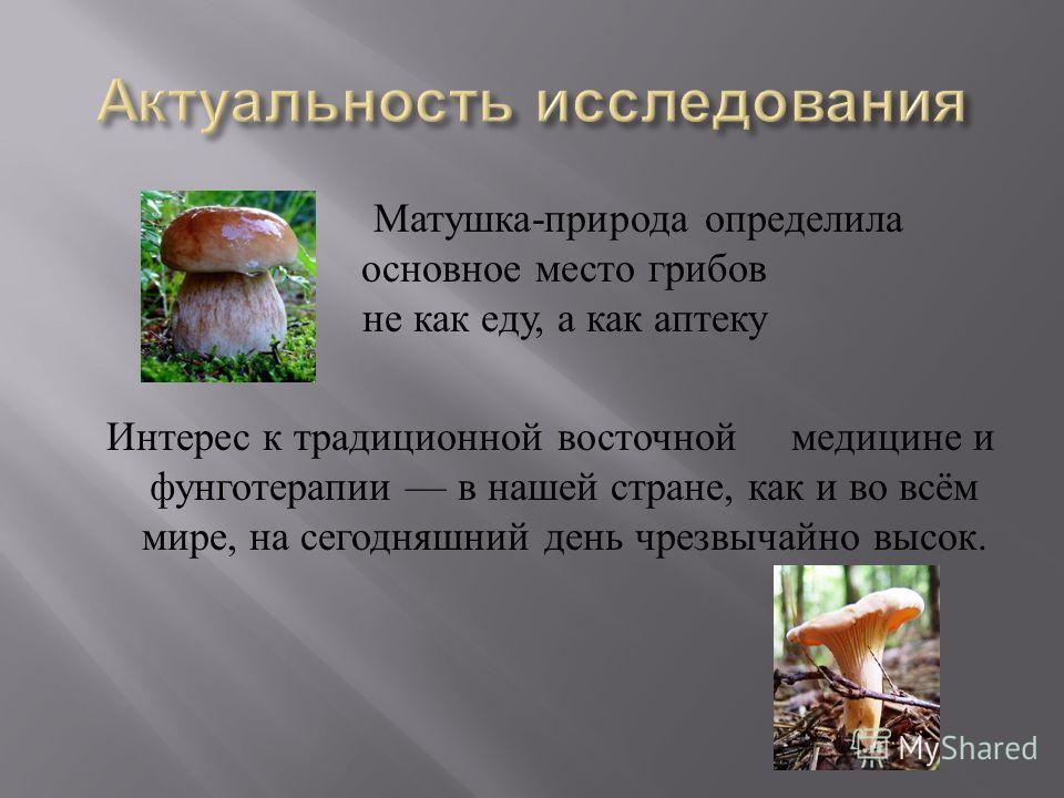 Матушка - природа определила основное место грибов не как еду, а как аптеку Интерес к традиционной восточной медицине и фунготерапии в нашей стране, как и во всём мире, на сегодняшний день чрезвычайно высок.