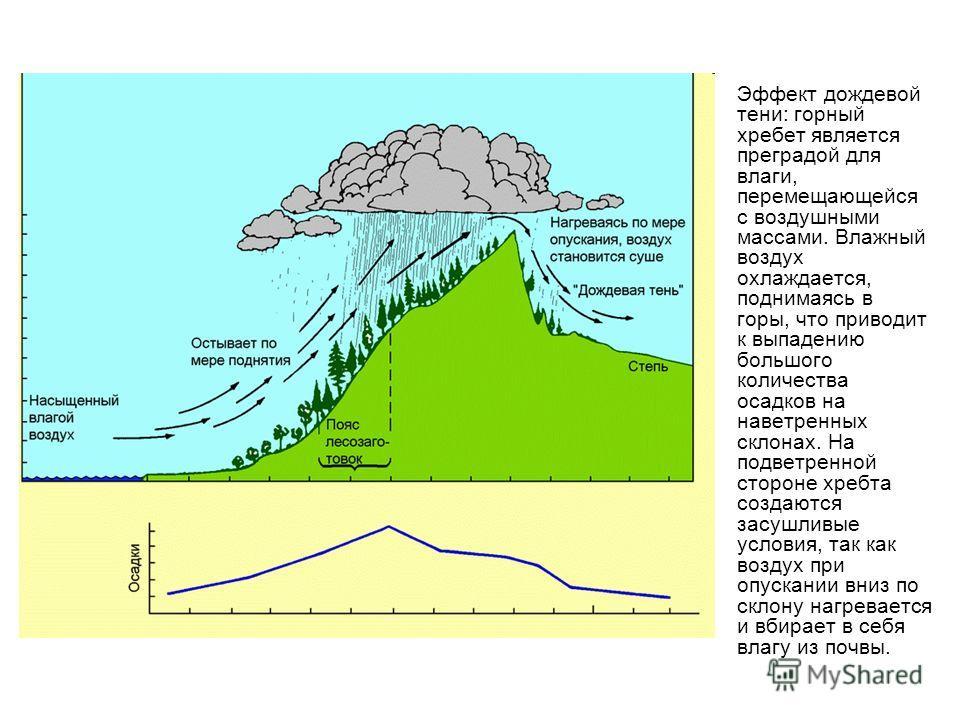 Эффект дождевой тени: горный хребет является преградой для влаги, перемещающейся с воздушными массами. Влажный воздух охлаждается, поднимаясь в горы, что приводит к выпадению большого количества осадков на наветренных склонах. На подветренной стороне