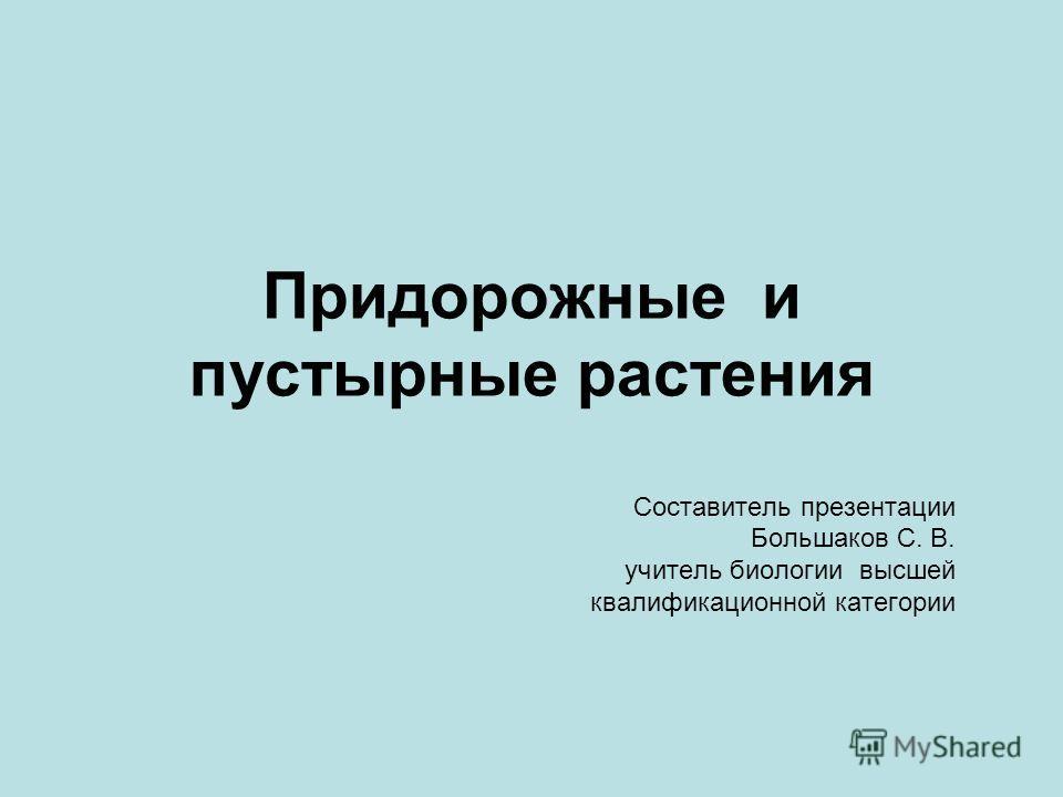 Придорожные и пустырные растения Составитель презентации Большаков С. В. учитель биологии высшей квалификационной категории