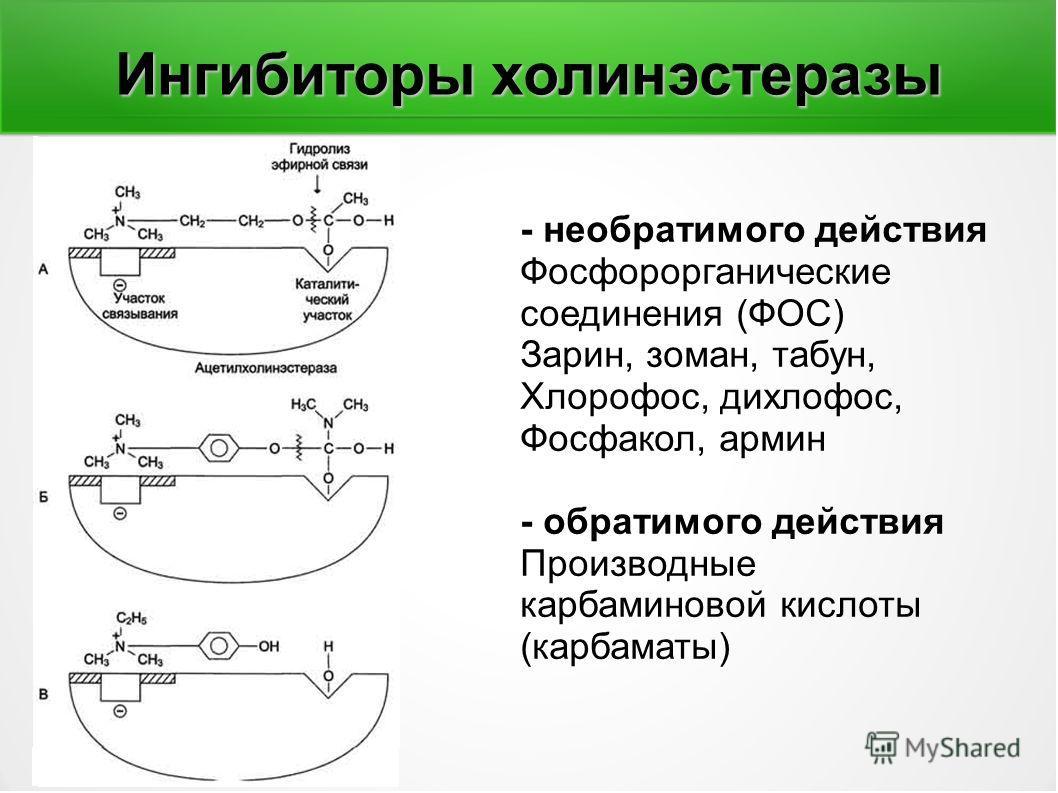 Ингибиторы холинэстеразы - необратимого действия Фосфорорганические соединения (ФОС) Зарин, зоман, табун, Хлорофос, дихлофос, Фосфакол, армен - обратимого действия Производные карбаминовой кислоты (карбаматы)