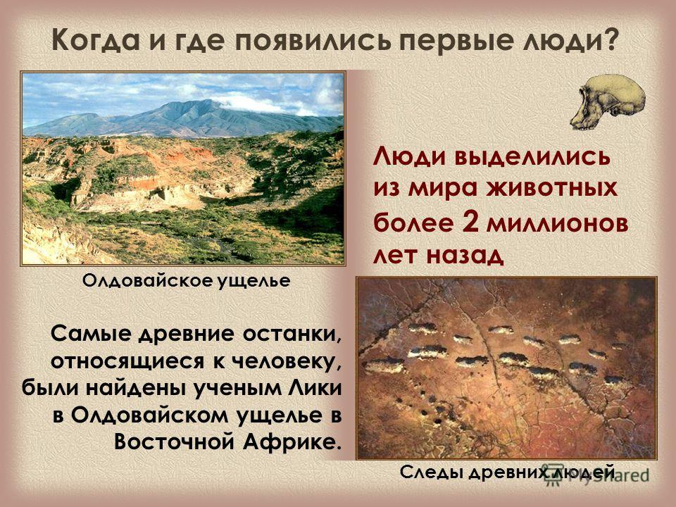 Олдовайское ущелье Самые древние останки, относящиеся к человеку, были найдены ученым Лики в Олдовайском ущелье в Восточной Африке. Люди выделились из мира животных более 2 миллионов лет назад Следы древних людей