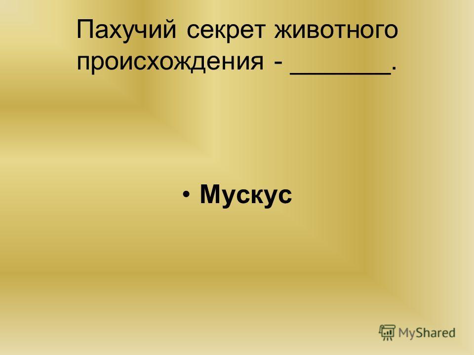 Пахучий секрет животного происхождения - _______. Мускус