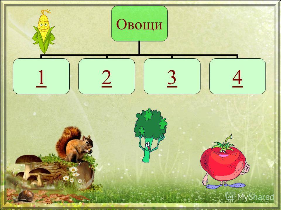 Овощи 1234
