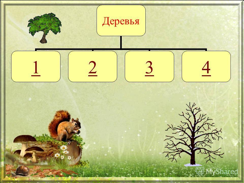 Деревья 1234