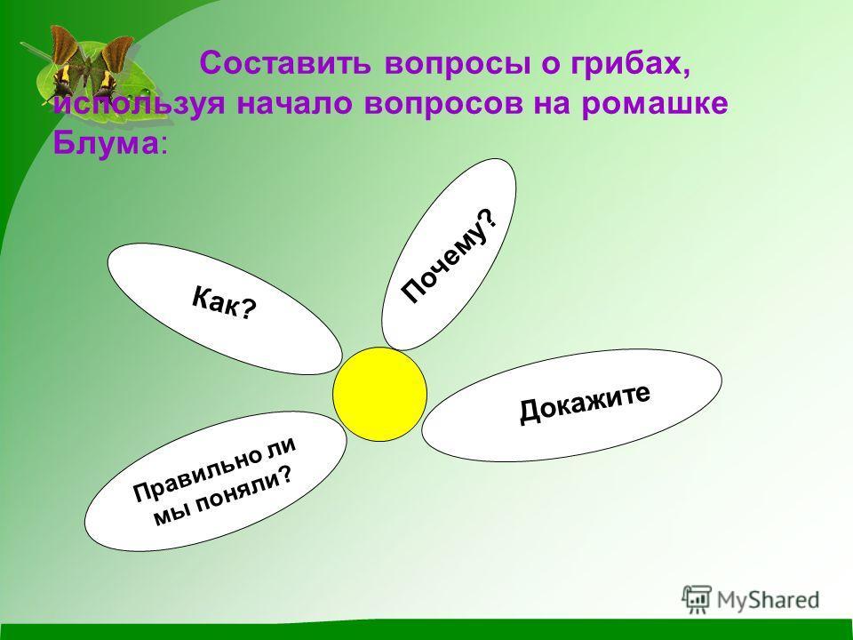 Составить вопросы о грибах, используя начало вопросов на ромашке Блума: Как? Почему? Правильно ли мы поняли? Докажите