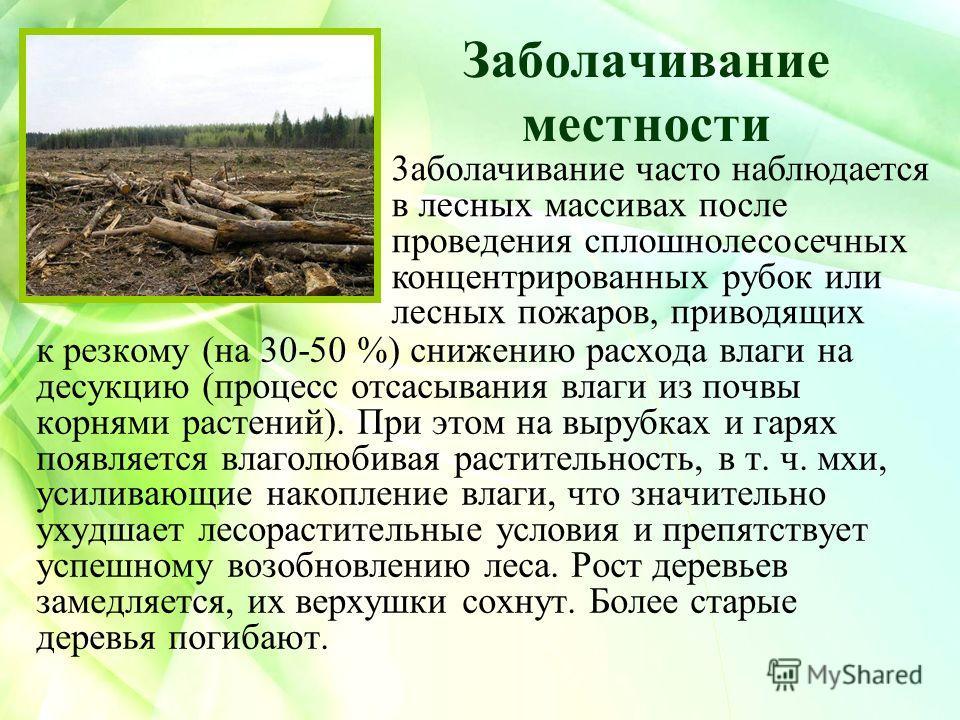 Ззаболачивание местности к резкому (на 30-50 %) снижению расхода влаги на дедукцию (процесс отсасывания влаги из почвы корнями растений). При этом на вырубках и гарях появляется влаголюбивая растительность, в т. ч. мхи, усиливающие накопление влаги,