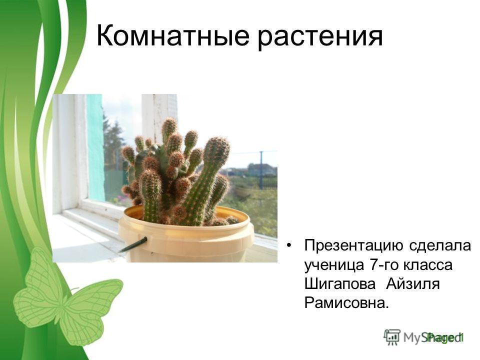 Powerpoint Templates Page 1 Free Powerpoint TemplatesPage 1 Комнатные растения Презентацию сделала ученица 7-го класса Шигапова Айзиля Рамисовна.