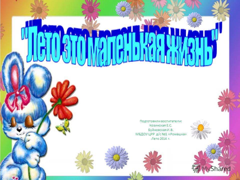Подготовили воспитатели: Козинская Е.С. Буйновская И.В. МБДОУ ЦРР д/с 1 «Ромашка» Лето 2014 г.