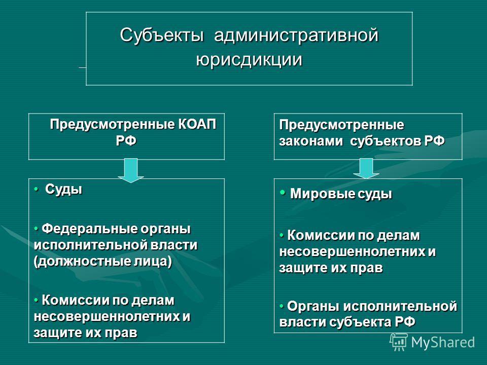 Субъекты административной ответственности Коллективные Индивидуальные Юридические лица Лица без гражданства Иностранные граждане Граждане РФ