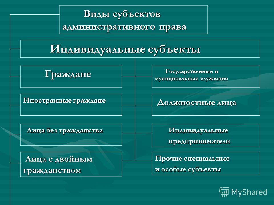 Госслужащие как субъекты административного права реферат 3484