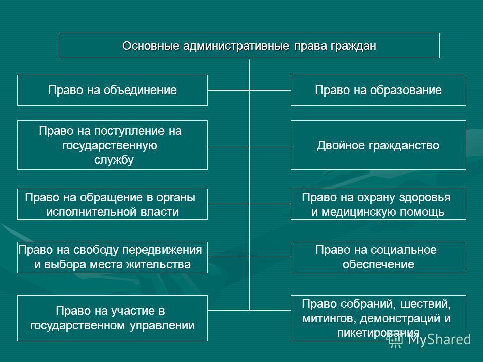 Основные административные права и обязанности граждан