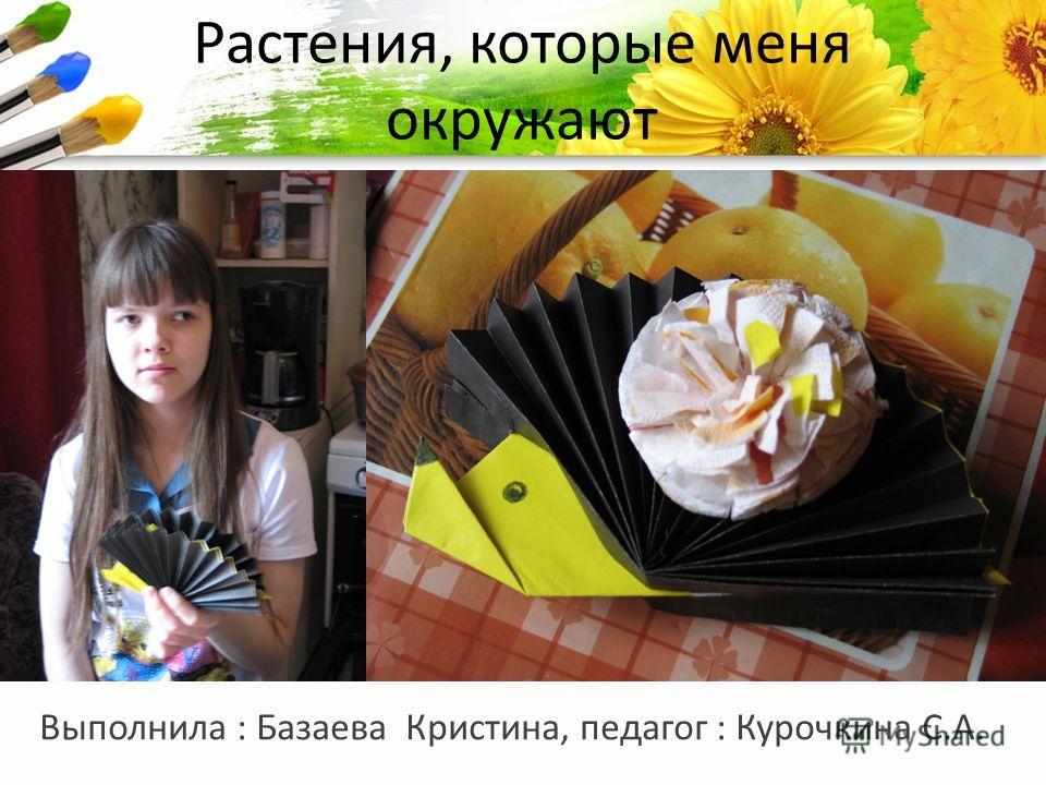 ProPowerPoint.Ru Растения, которые меня окружают Выполнила : Базаева Кристина, педагог : Курочкина С.А.
