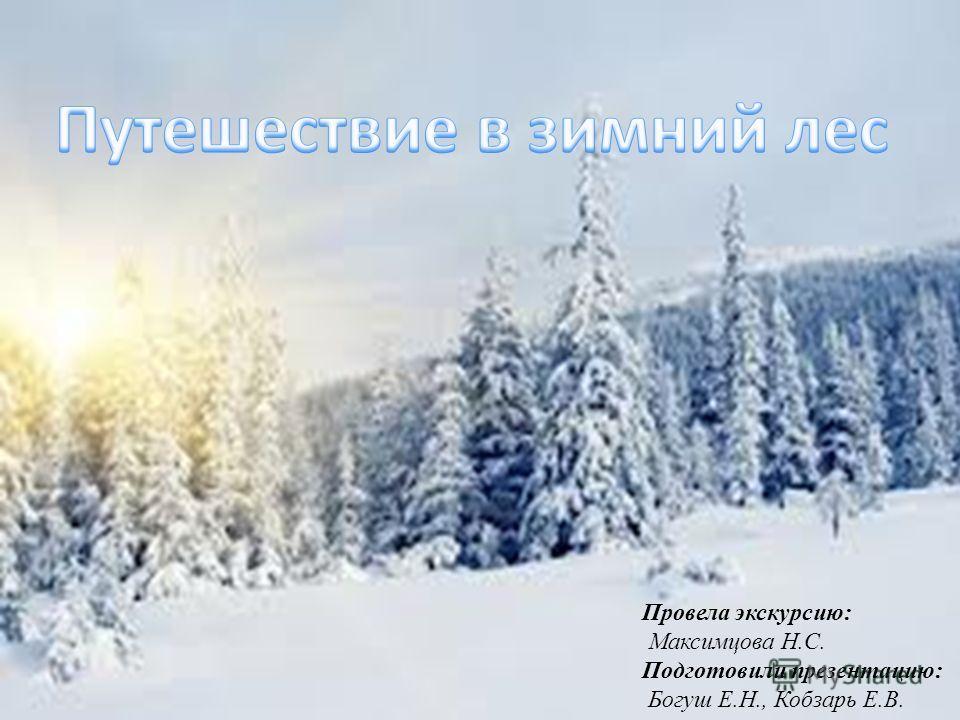 Провела экскурсию: Максимцова Н.С. Подготовили презентацию: Богуш Е.Н., Кобзарь Е.В.