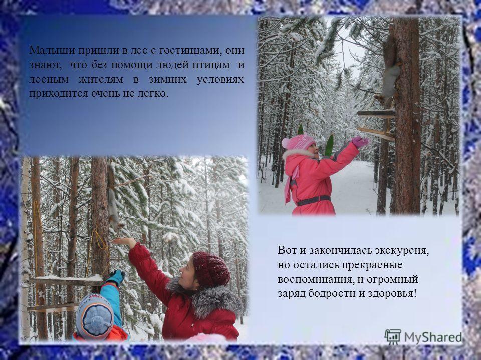 Вот и закончилась экскурсия, но остались прекрасные воспоминания, и огромный заряд бодрости и здоровья! Малыши пришли в лес с гостинцами, они знают, что без помощи людей птицам и лесным жителям в зимних условиях приходится очень не легко.