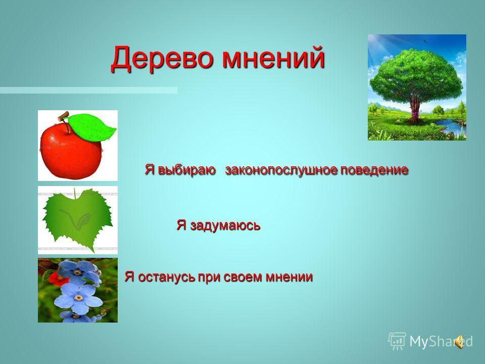Дерево мнений Я выбираю законопослушное поведение Я задумаюсь Я останусь при своем мнении