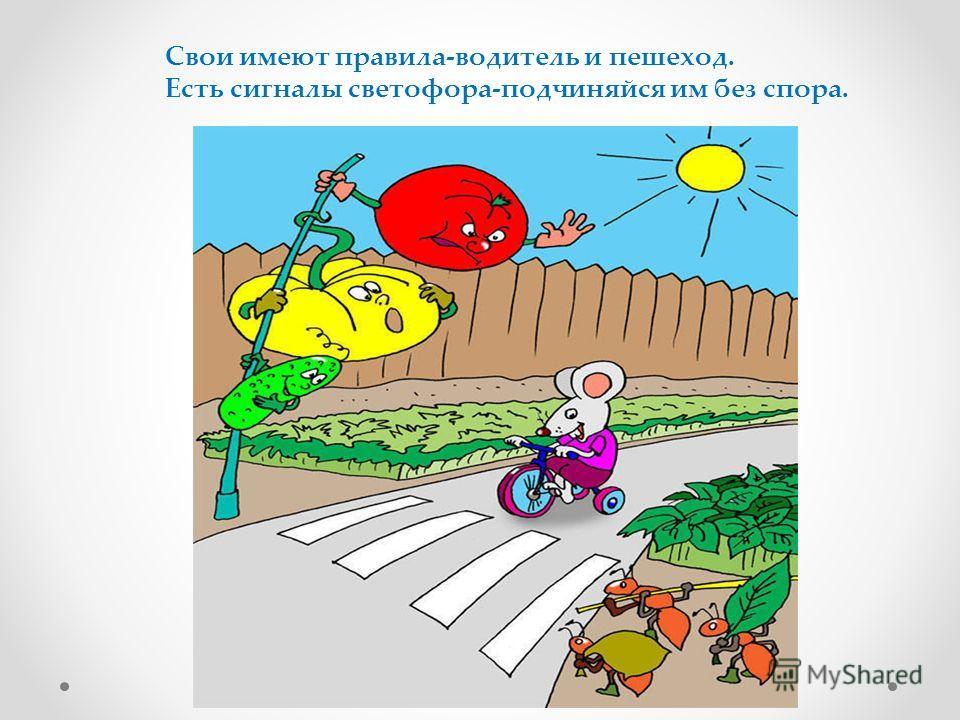 Свои имеют правила-водитель и пешеход. Есть сигналы светофора-подчиняйся им без спора.