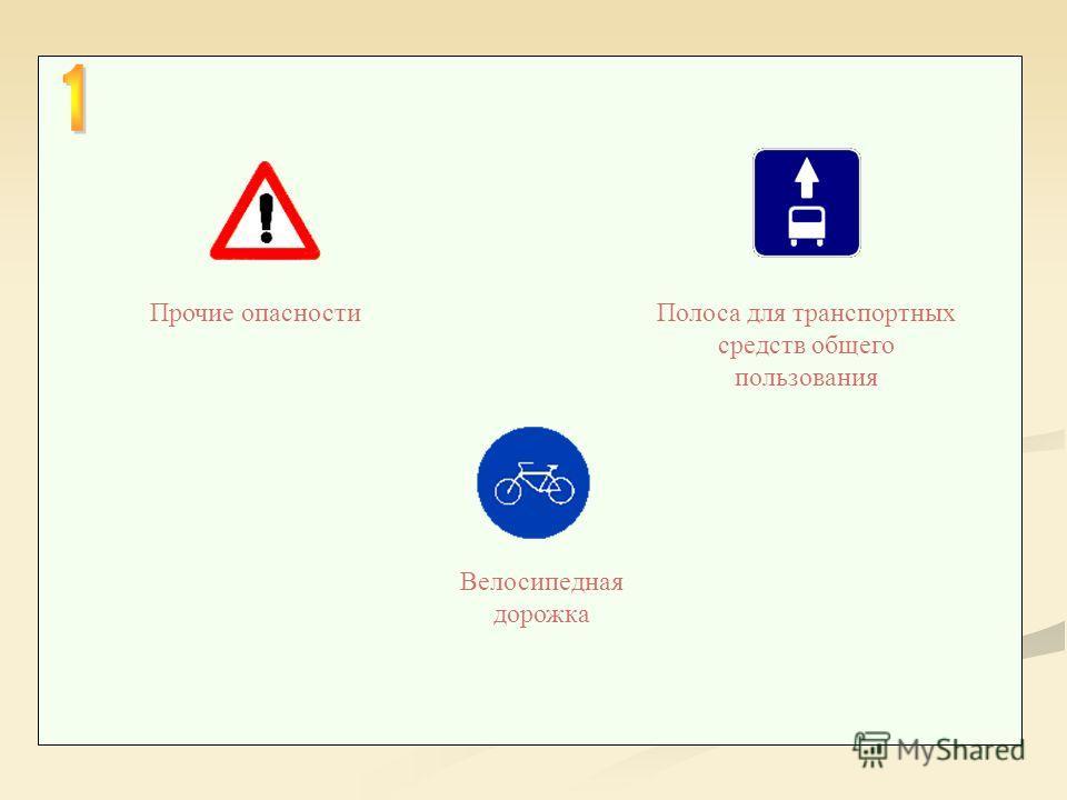 Полоса для транспортных средств общего пользования Прочие опасности Велосипедная дорожка