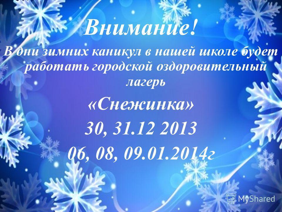 Внимание! В дни зимних каникул в нашей школе будет работать городской оздоровительный лагерь «Снежинка» 30, 31.12 2013 06, 08, 09.01.2014 г