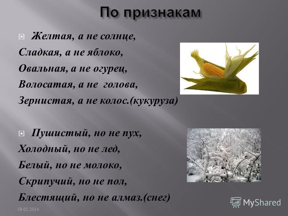 Желтая, а не солнце, Сладкая, а не яблоко, Овальная, а не огурец, Волосайтая, а не голова, Зернистая, а не колос.( кукуруза ) Пушистый, но не пух, Холодный, но не лед, Белый, но не молоко, Скрипучий, но не пол, Блестящий, но не алмаз.( снег ) 19.02.2