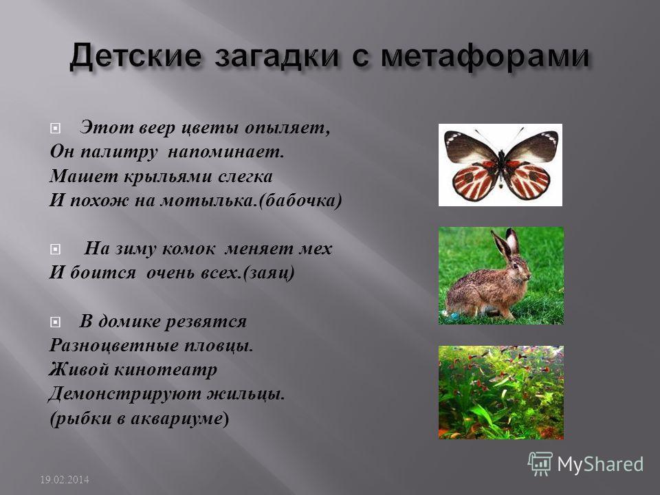 Этот веер цветы опыляет, Он палитру напоминает. Машет крыльями слегка И похож на мотылька.( бабочка ) На зиму комок меняет мех И боится очень всех.( заяц ) В домике резвятся Разноцветные пловцы. Живой кинотеатр Демонстрируют жильцы. ( рыбки в аквариу