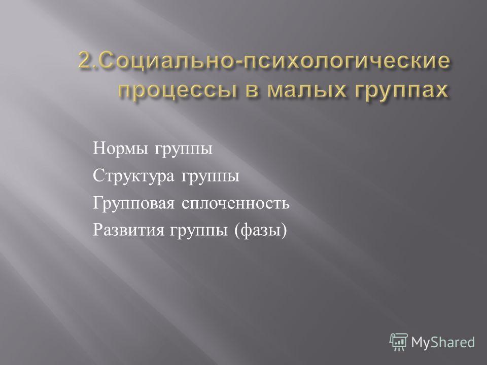 Нормы группы Структура группы Групповая сплоченность Развития группы ( фазы )
