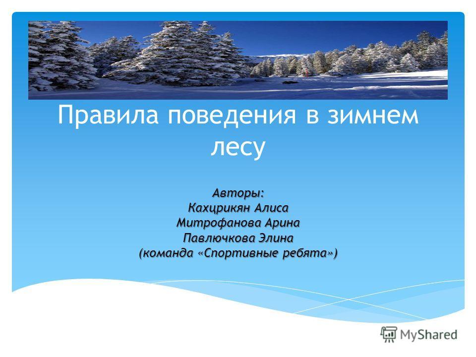 Правила поведения в зимнем лесу Авторы: Кахцрикян Алиса Митрофанова Арина Павлючкова Элина (команда «Спортивные ребята»)