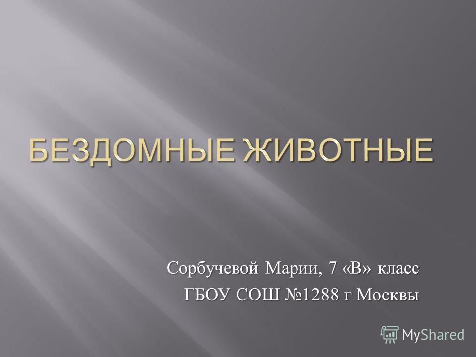 Сорбучевой Марии, 7 « В » класс ГБОУ СОШ 1288 г Москвы