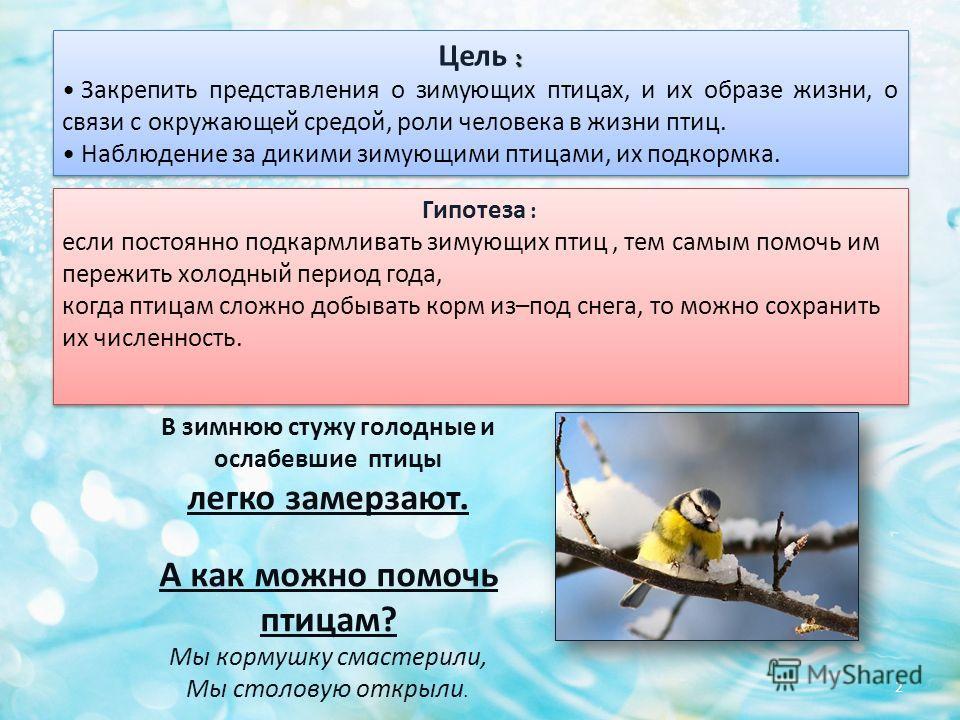 В зимнюю стужу голодные и ослабевшие птицы легко замерзают. А как можно помочь птицам? Мы кормушку смастерили, Мы столовую открыли. : Цель : Закрепить представления о зимующих птицах, и их образе жизни, о связи с окружающей средой, роли человека в жи