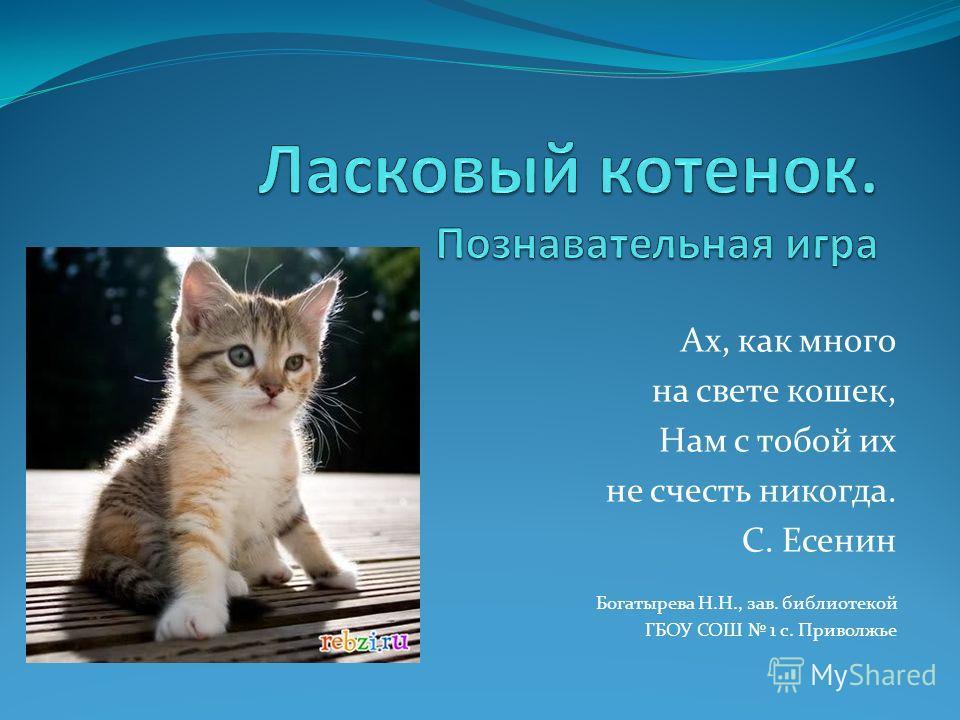 Ах, как много на свете кошек, Нам с тобой их не счесть никогда. С. Есенин Богатырева Н.Н., зав. библиотекой ГБОУ СОШ 1 с. Приволжье