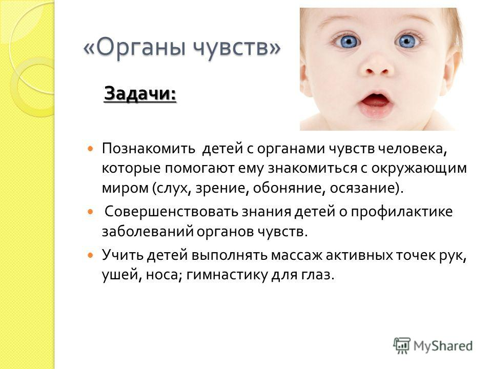 « Органы чувств » Задачи : Познакомить детей с органами чувств человека, которые помогают ему знакомиться с окружающим миром ( слух, зрение, обоняние, осязание ). Совершенствовать знания детей о профилактике заболеваний органов чувств. Учить детей вы