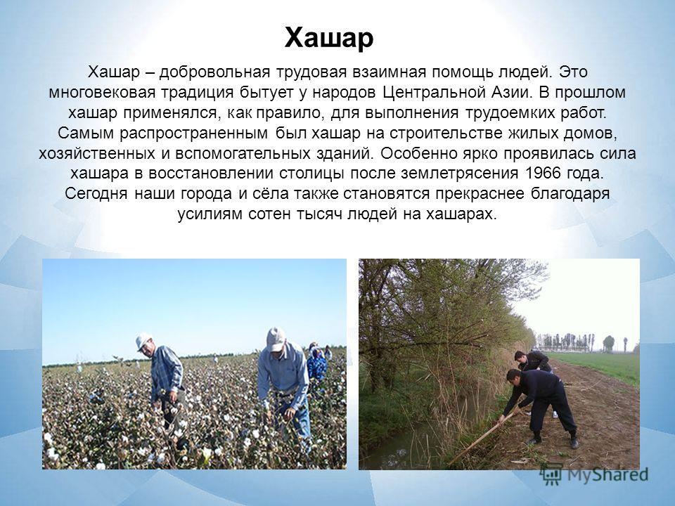 Хашар Хашар – добровольная трудовая взаимная помощь людей. Это многовековая традиция бытует у народов Центральной Азии. В прошлом хашар применялся, как правило, для выполнения трудоемких работ. Самым распространенным был хашар на строительстве жилых