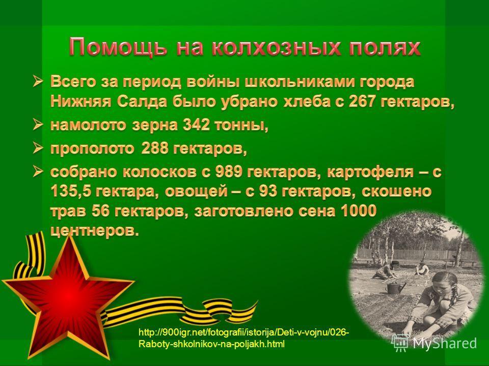 http://900igr.net/fotografii/istorija/Deti-v-vojnu/026- Raboty-shkolnikov-na-poljakh.html